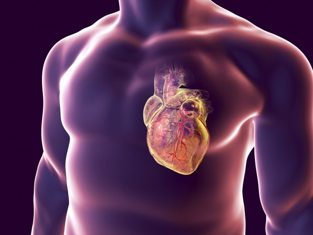 HEART ATTACK - cover