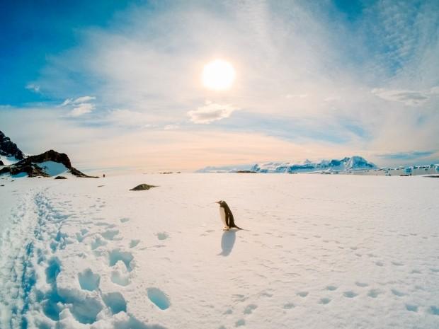 Antarctic marathon